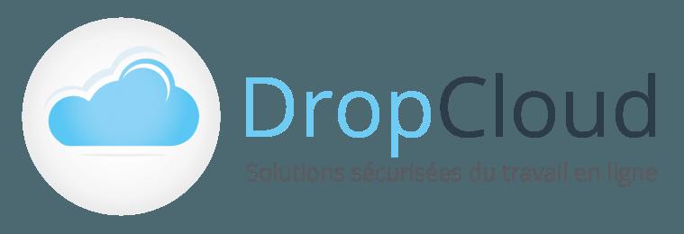 LogoDropCloudHorizonH260